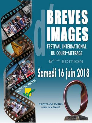 Festival international du court metrage breves d images 2018